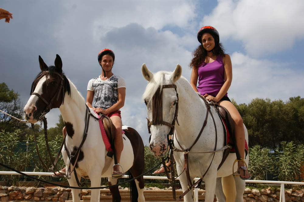 horse_(5).JPG